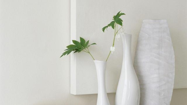 Warna Putih Netral Yang Klasik
