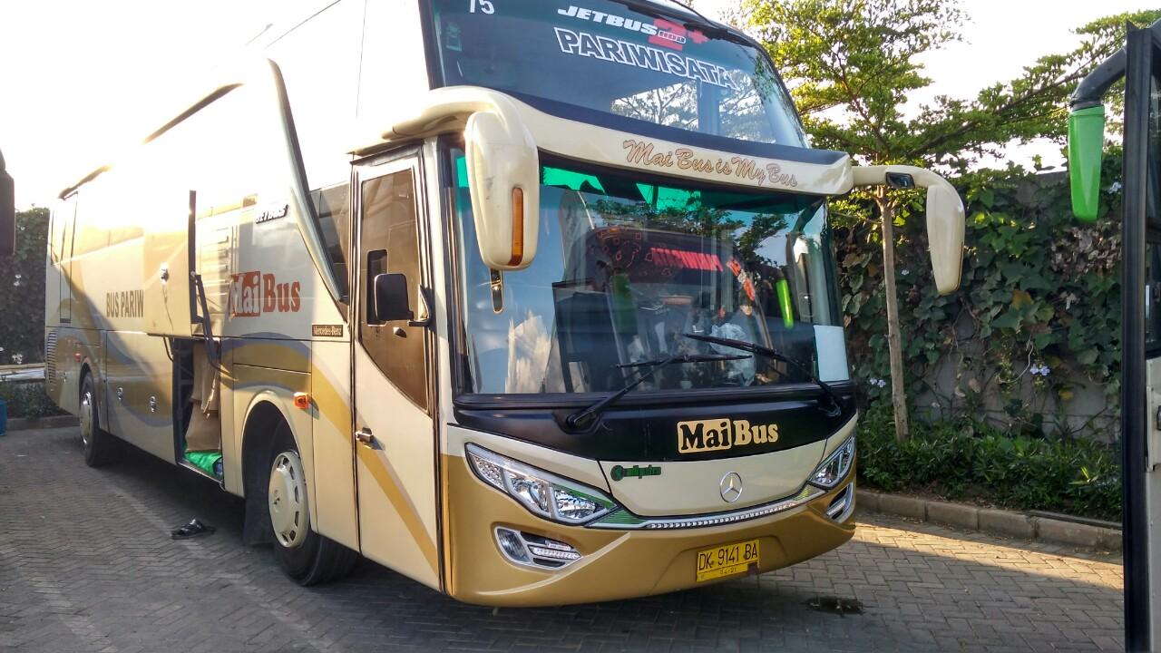 Bus Pariwisata Big Bus