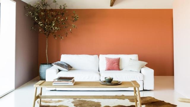 Warna orange Yang Mempesona